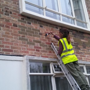 Dyebrick application to blend poor brick repairs